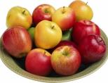 Полезны ли яблоки беременным женщинам