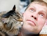 Как понять, что кошка тебя любит?