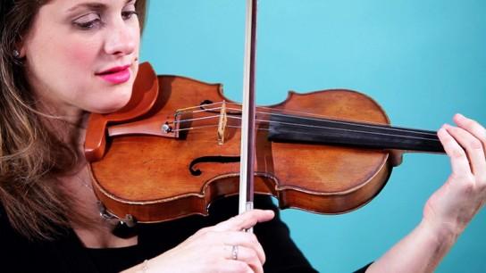 Смычок до скрипки своими руками