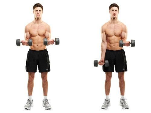 Упражнения с гантелями для толстых мужчин