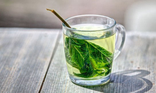 помогает ли зеленый чай для похудения отзывы
