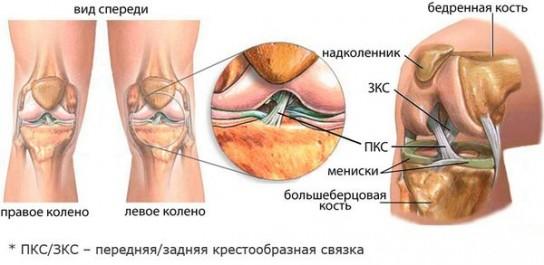 стопочку опухло правое колено и болит моему Вас украли