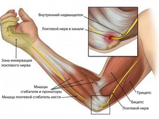 Боль в локтевом суставе причины эпикондилит упражнения для голеностопного сустава после травмы видео