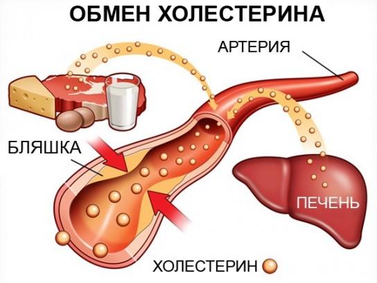 повышенный холестерин проблемы печенью